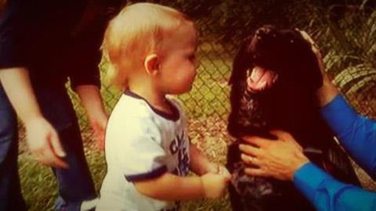 Σκύλος «λέει» στους γονείς ότι η νταντά κακοποιεί το παιδί τους