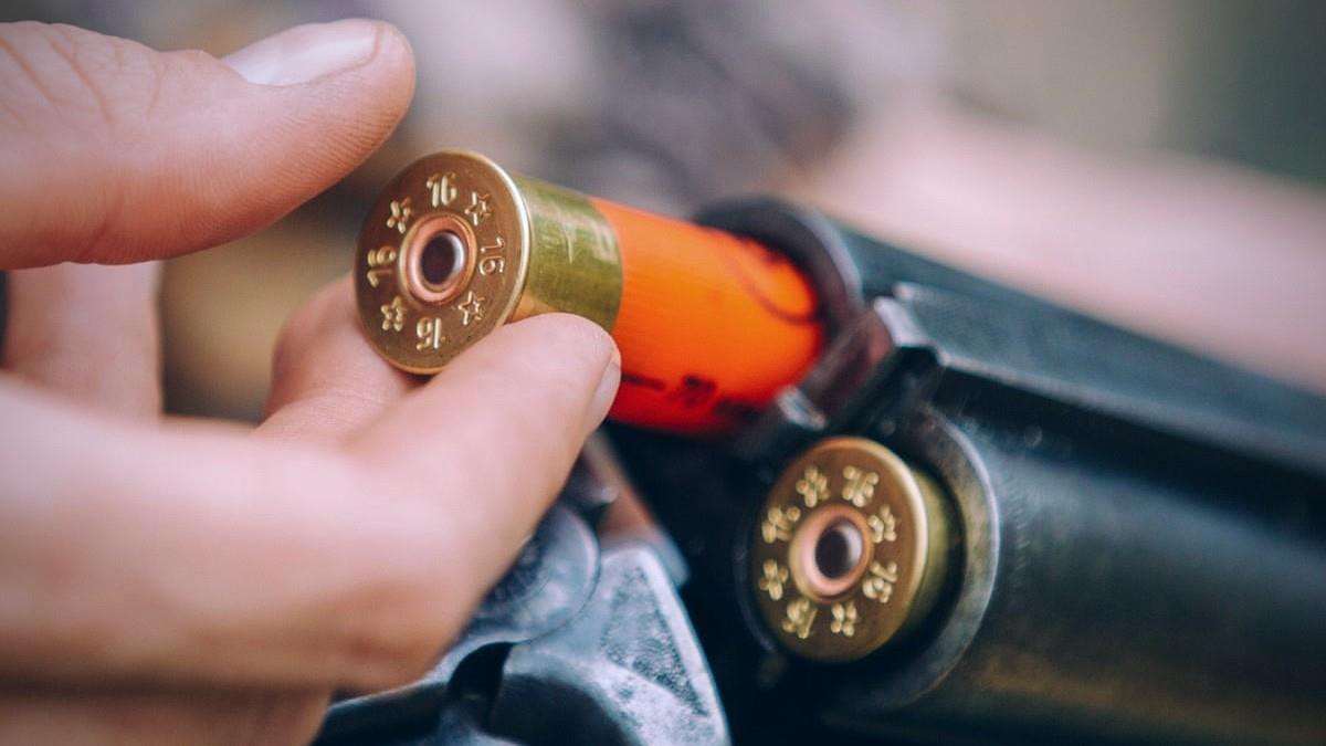 Αιτωλοακαρνανία: άνδρας πυροβόλησε για να διώξει παιδιά τραυματίζοντας το ένα