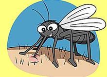 Φυσικά γιατρικά για το τσίμπημα των κουνουπιών