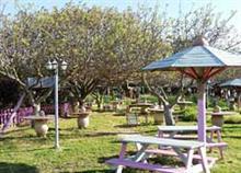7 πάρκα και κήποι για να πάτε με το παιδί όταν έχει λιακάδα!