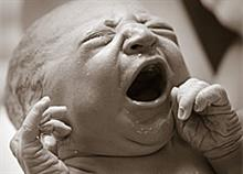 Το νεογέννητο που βγαίνει από τον αμνιακό σάκο είναι ό,τι πιο εντυπωσιακό θα δείτε σήμερα!