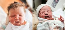 Νεογέννητα με γκρινιάρικο ύφος: 13 ξεκαρδιστικές φωτογραφίες!