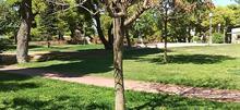5 απίστευτα και κρυμμένα πάρκα της Αθήνας για ανοιξιάτικες βόλτες με τα παιδιά