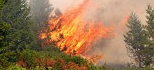 Τι πρέπει να κάνετε σε περίπτωση πυρκαγιάς