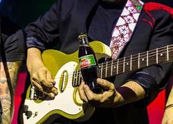 Coca-Cola χωρίς θερμίδες και με γλυκαντικό από το φυτό στέβια: Νέα απόλαυση «φυσικά»... με κλειστά μάτια