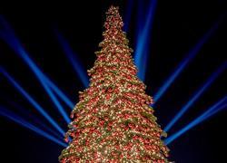 Η μαγεία των Χριστουγέννων στο McArthurGlen