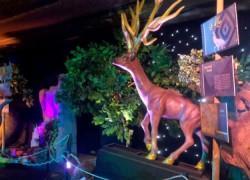 Κερδίστε διπλές προσκλήσεις για το θεματικό Πάρκο «Ηρακλής – Οι 12 Άθλοι» στις 14/12